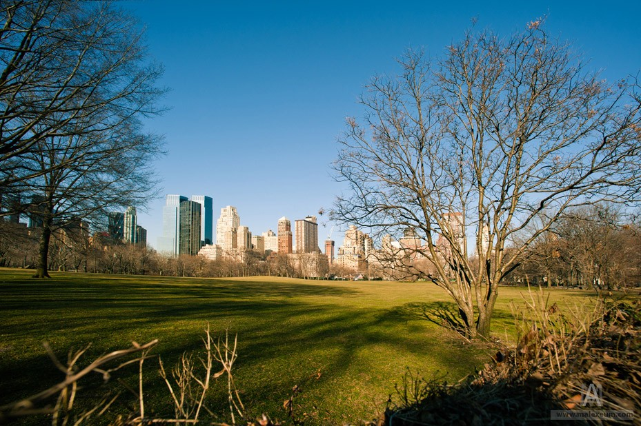 Центральный парк Нью-Йорка (Central Park)