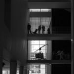 Музей современного искусства Нью-Йорк (MoMA)