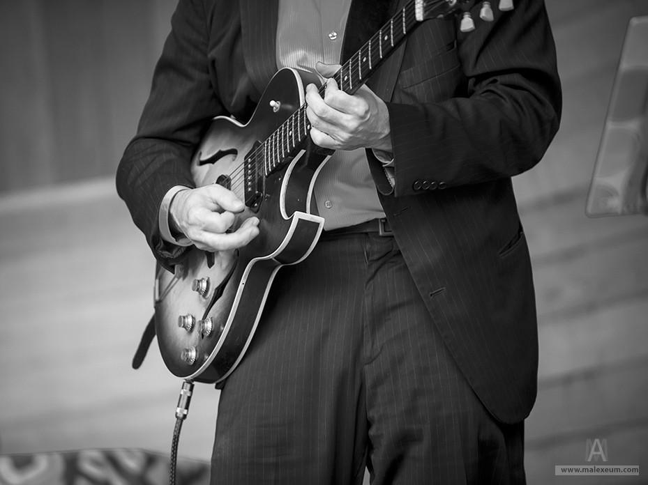 Фестиваль новоорлеанского джаза в саду имени Баумана.
