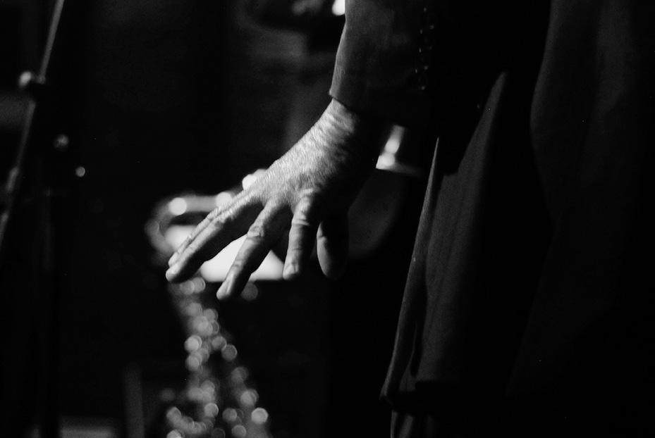 Концертная фотосъемка Стивена Митчела и Влерия Киселева